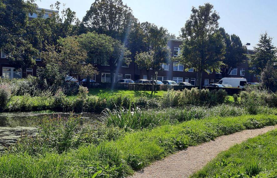 Gemeente Den Haag: aanbesteding duurzame verwarming met lage temperatuur voor nieuwbouw Laakhavens