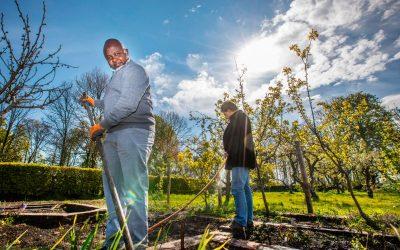 Elemam, Patricia en Jerney verbouwen voedsel in de stad