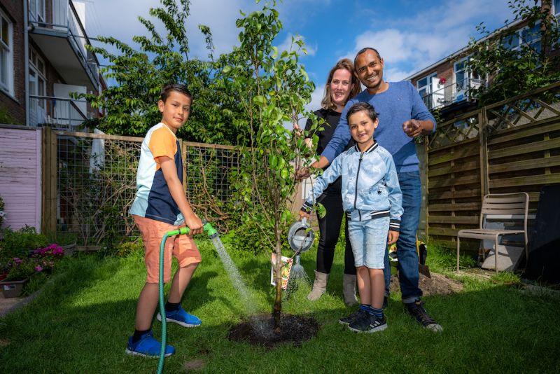 We delen 1.000 bomen uit! Vraag jij ook een boom aan?